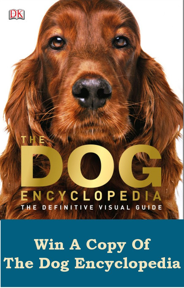 Win A Dog Book
