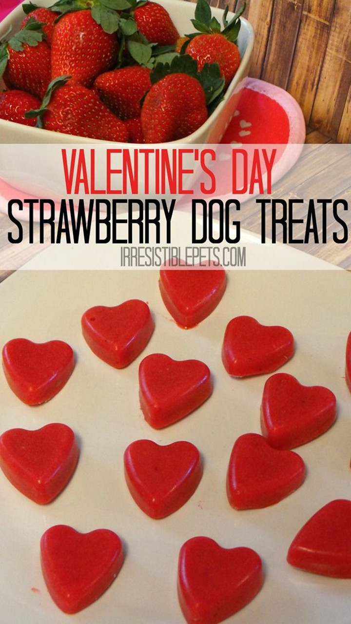 Strawberry Smoothie Dog Treats
