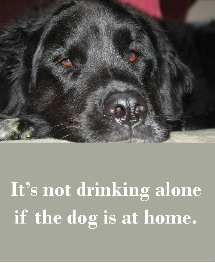 It's not drinking alone if the dog is at home.