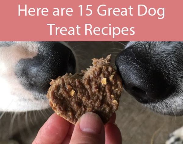 Diabetic Dog Treats