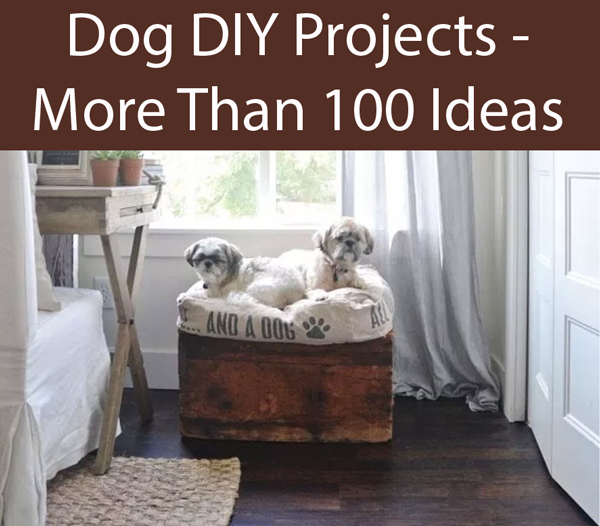 Diy Dogs Bed With Storage