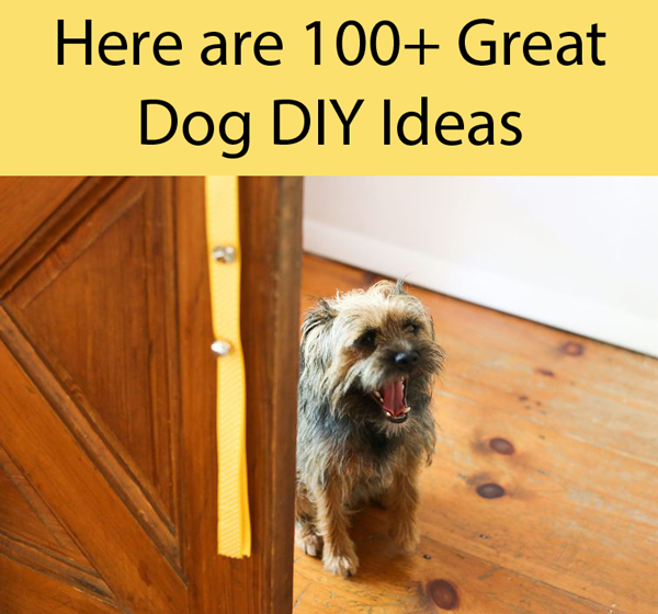 How To Make A Dog Door Bell