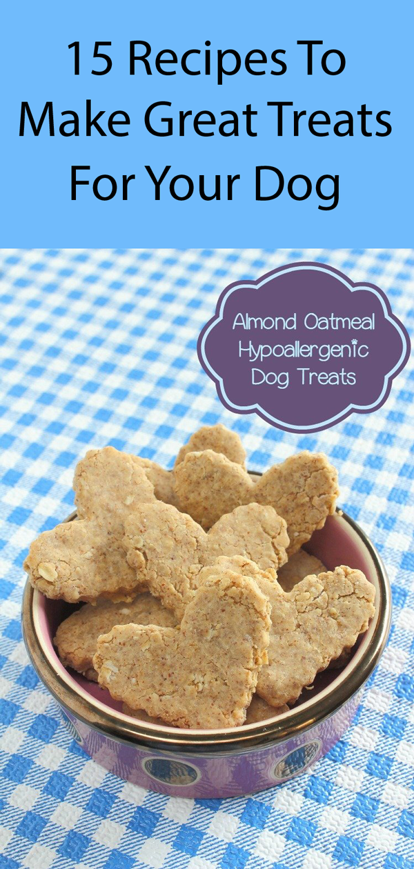 Hypoallergenic Dog Treat Recipe