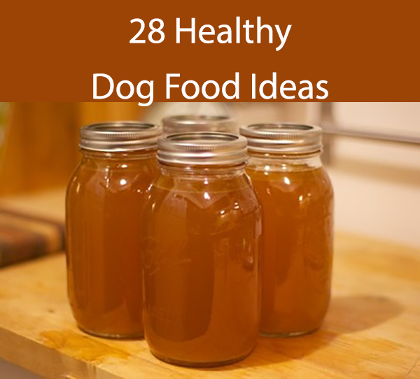 28 Healthy Dog Food Ideas