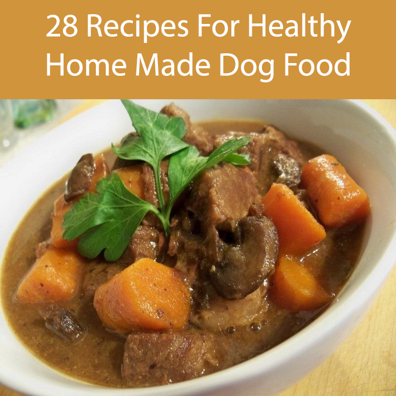28 Recipes For Healthy Home Made Dog Food