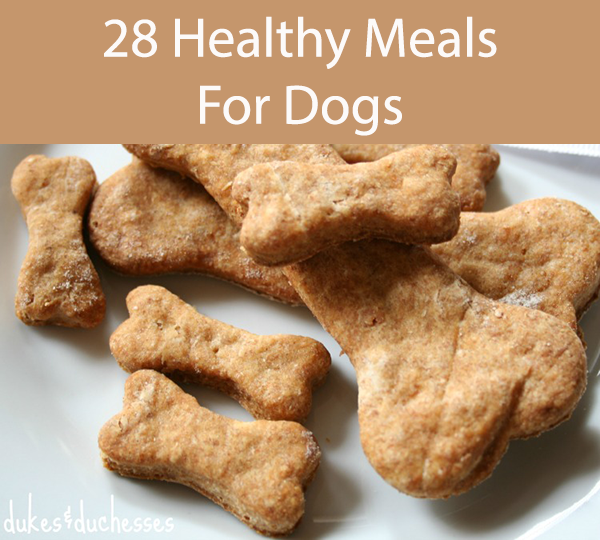 28 Healthy Meals For Dogs