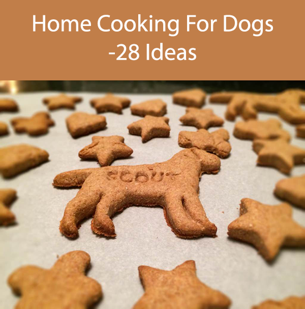 Home Cooking For Dogs -28 Ideas