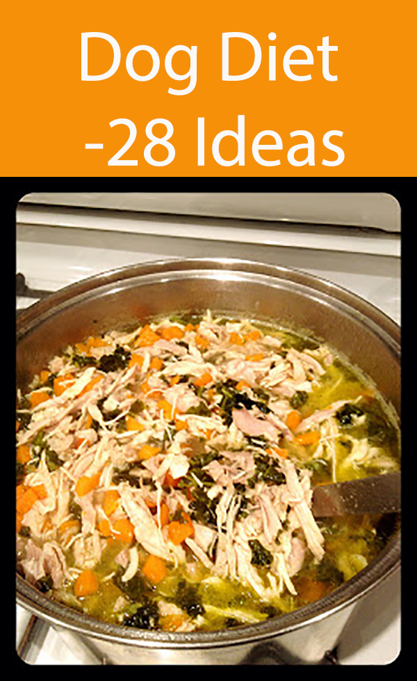 Dog Diet -28 Ideas