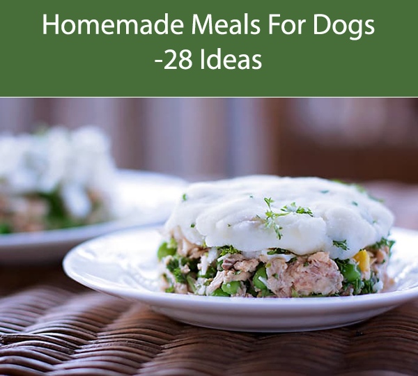 Homemade Meals For Dogs -28 Ideas