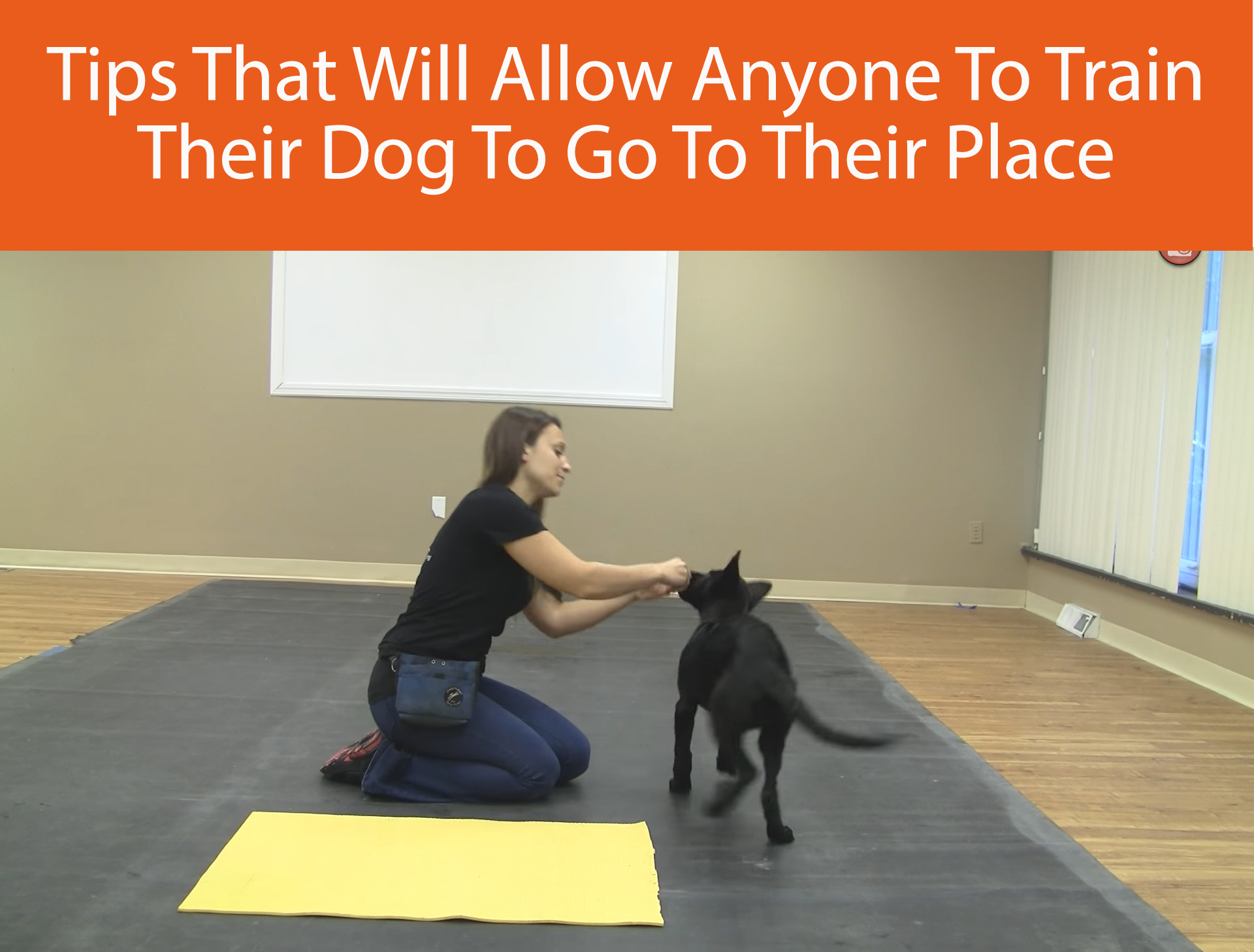 Tips That Will Allow Anyone To Train Their Dog To Go To Their Place