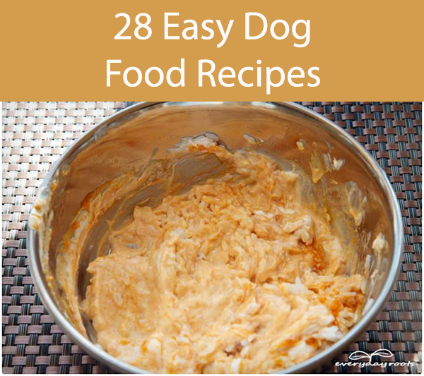 28 Easy Dog Food Recipes