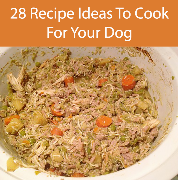 28 Recipe Ideas To Cook For Your Dog