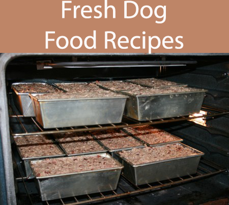 8 Fresh Dog Food Recipes