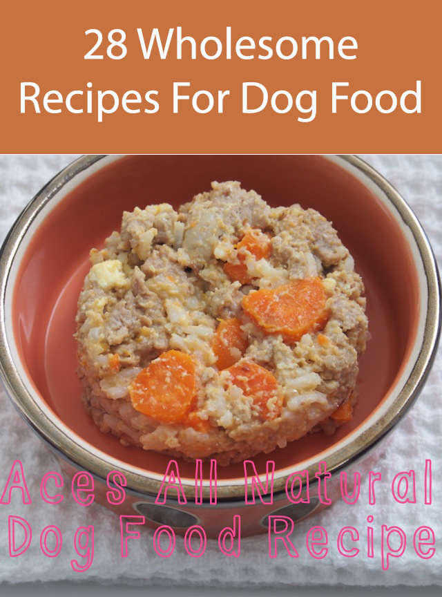 28 Wholesome Recipes For Dog Food