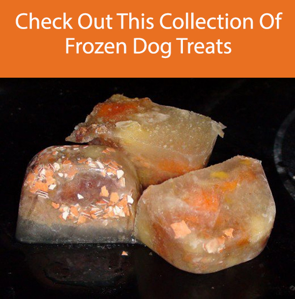 Chicken Liver and Sweet Potato Frozen Dog Treats